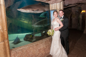 Wedding at Long Island Aquarium